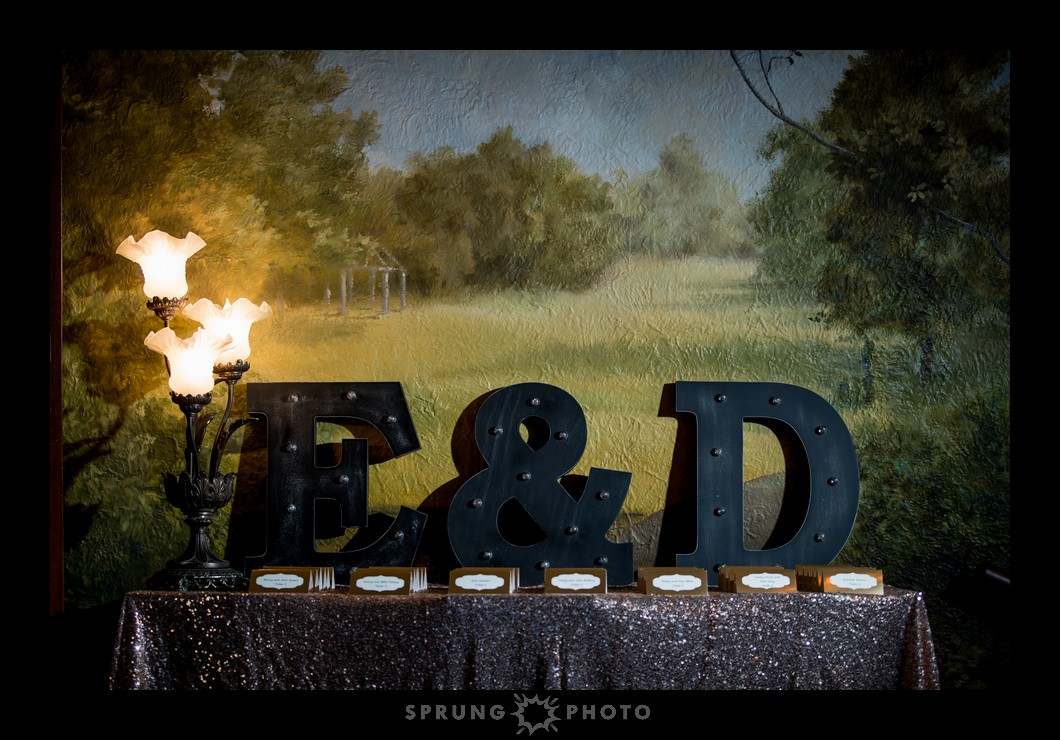 Erika-and-Dan-Redfield-Estate-Glenview-Wedding-Sprung-Photo-194_web.jpg