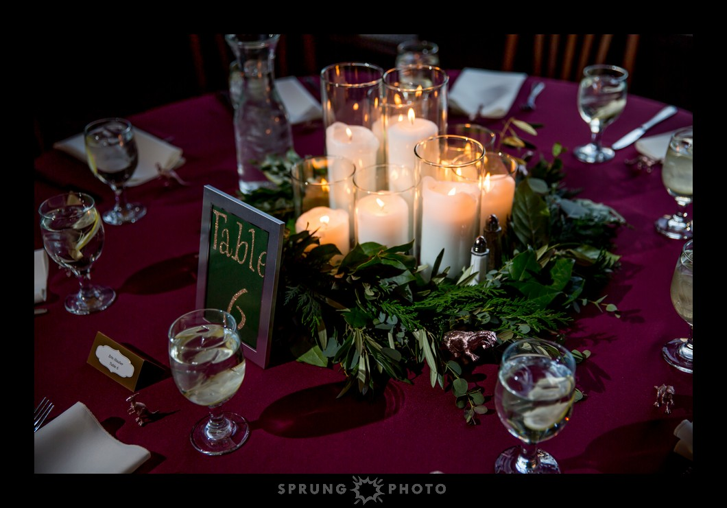 Erika-and-Dan-Redfield-Estate-Glenview-Wedding-Sprung-Photo-553_web.jpg