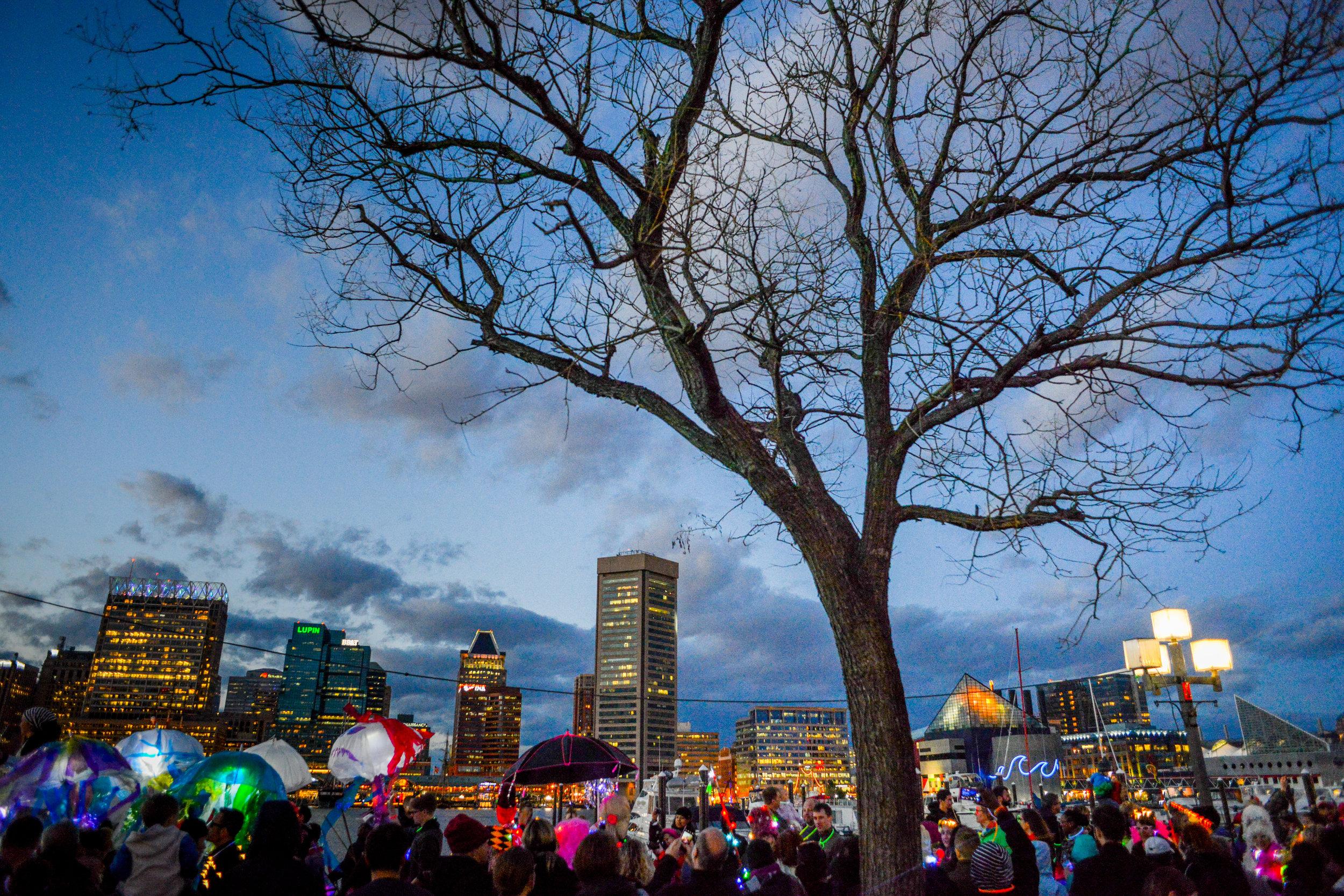 Lantern Parade Hi-Res-016.jpg