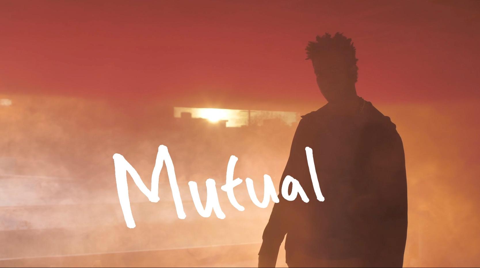 Mutual cover