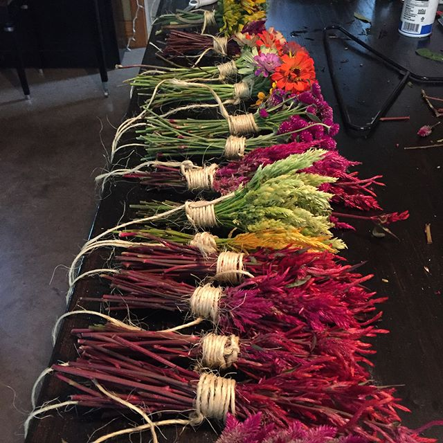 Colorful harvest