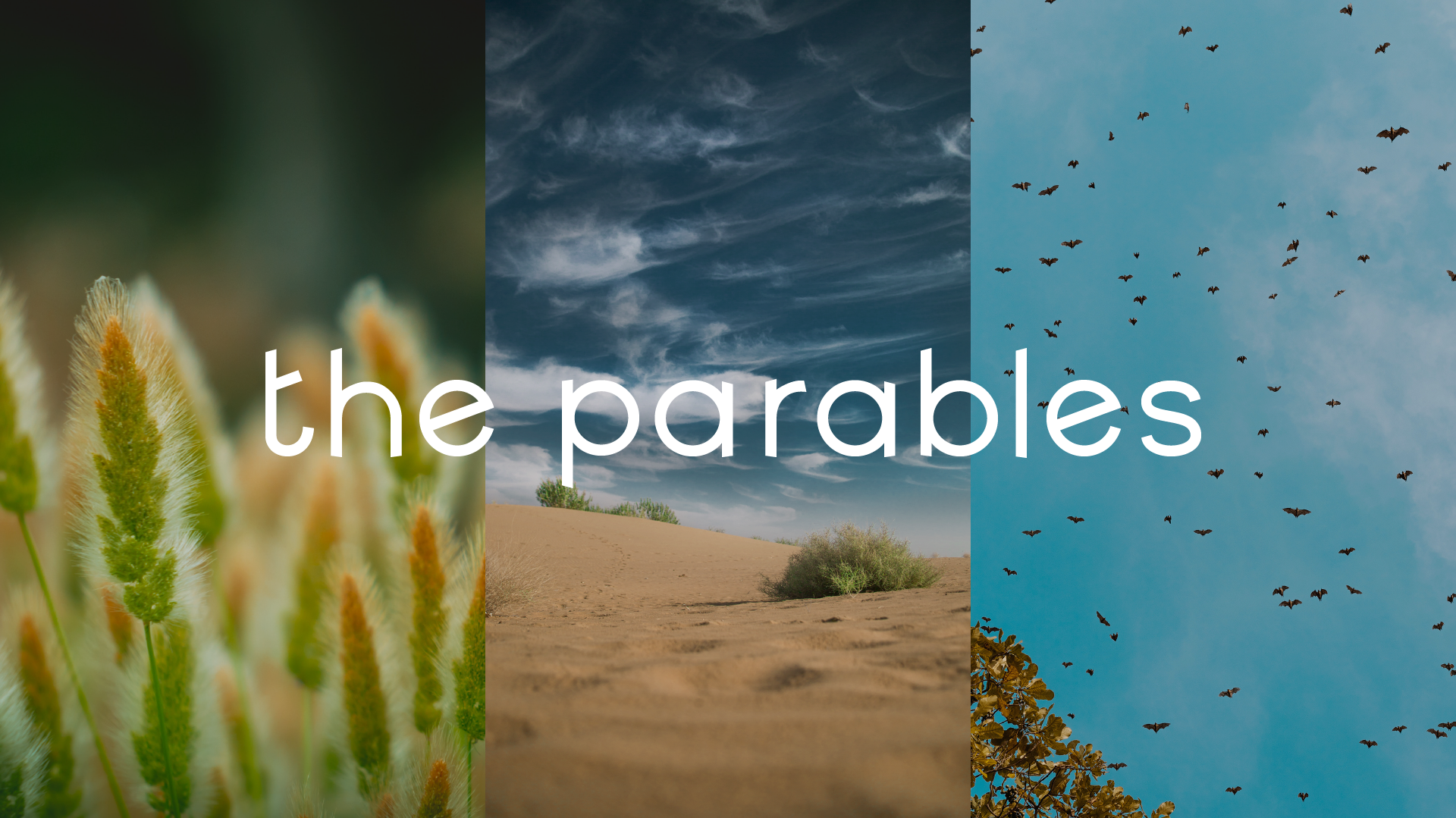 OTC_ParablesGraphics_6.png