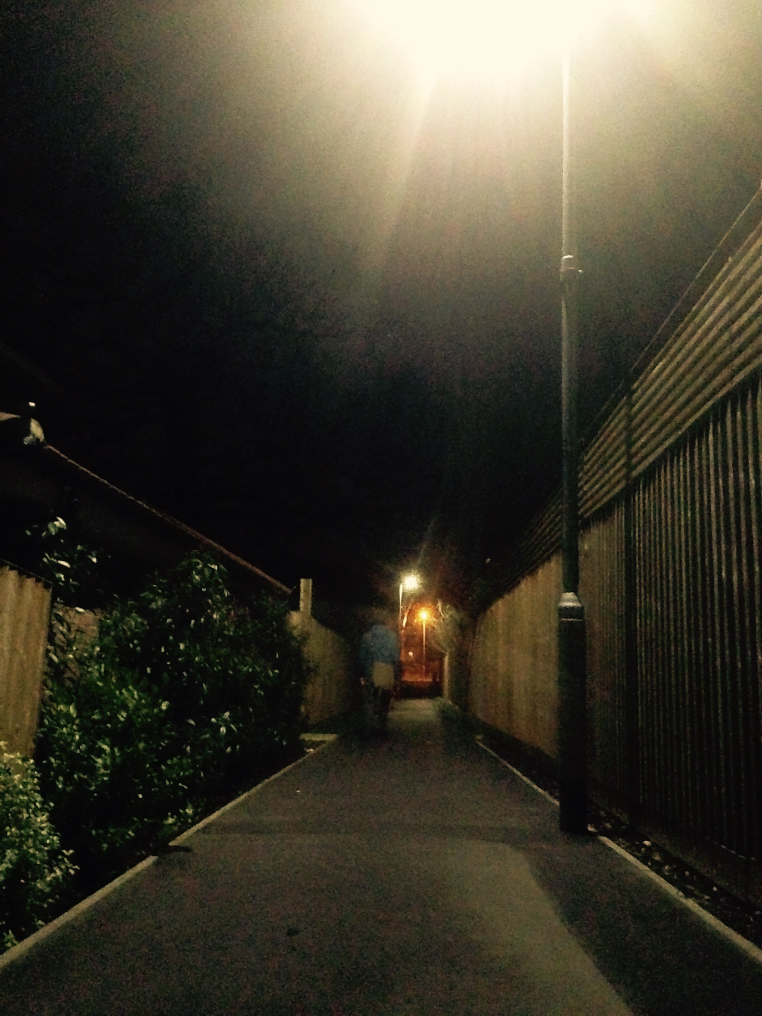 Streetlights with Tadz.jpg