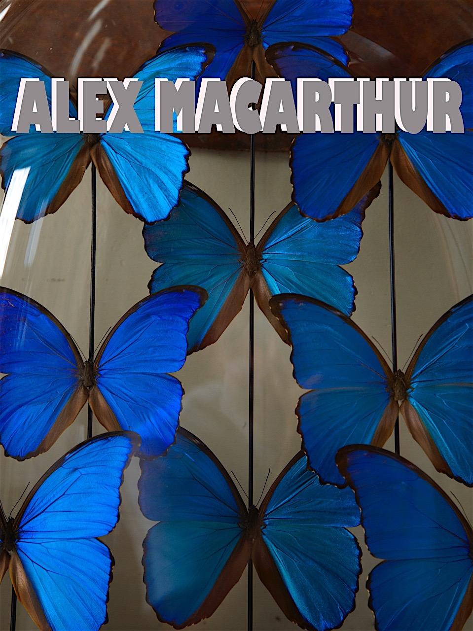 Alex MacCarthur