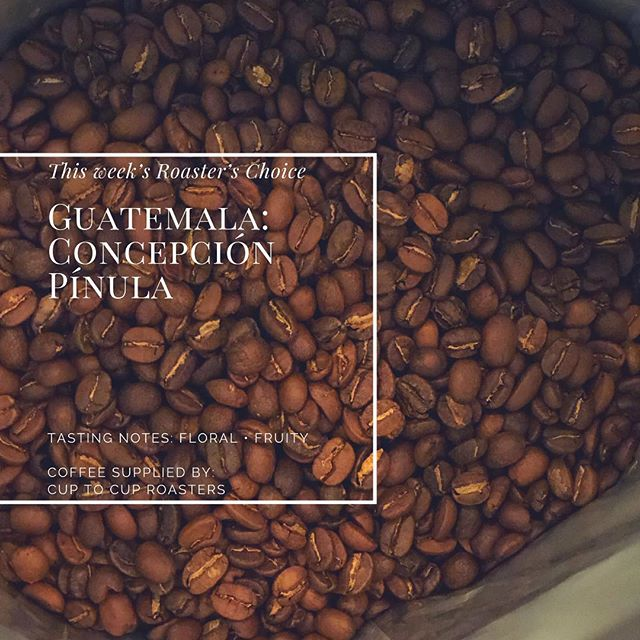 Today's roaster's choice: Gautemala! Check out @cuptocupcafe for more info on all of their coffee selections. . . . . . #coffee #savannah #georgia #scad #armstrong #georgiasouthern #coldbrew #historic #espresso #community #conversation #neighborhood #blessings #positiveenergy #guatemala #concepción