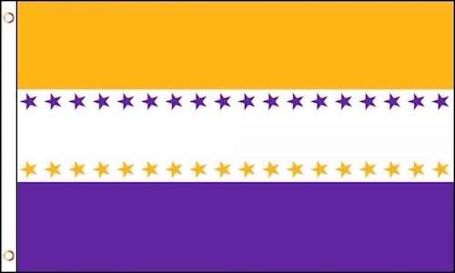 19th Amendment Victory