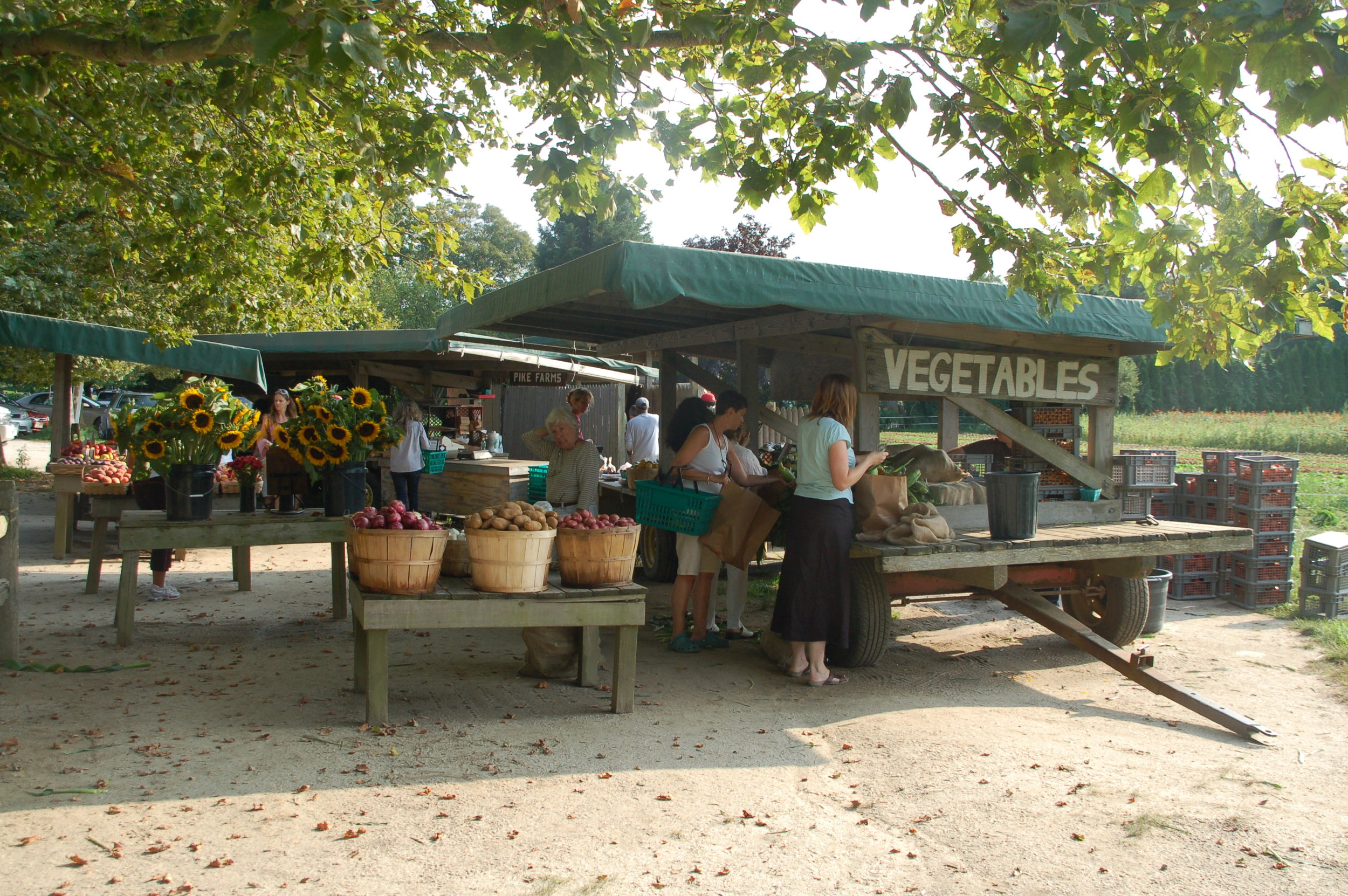 Local farmstands abound in the Hamptons