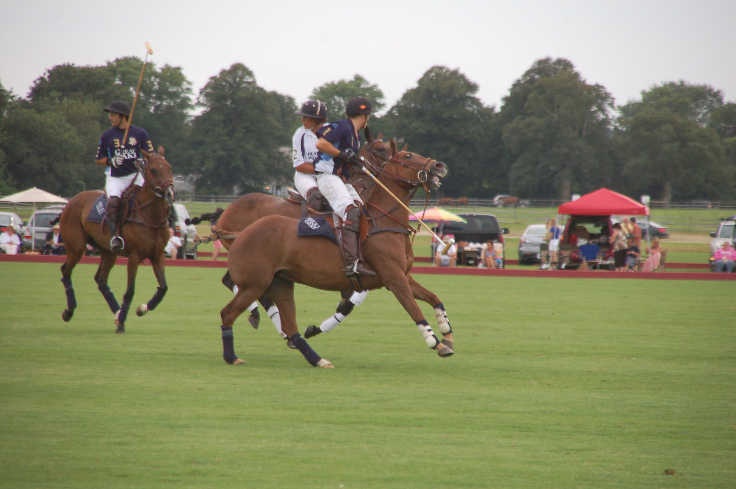 Southampton Polo in Water Mill