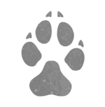 Animals-Dog-Track-icon.jpg