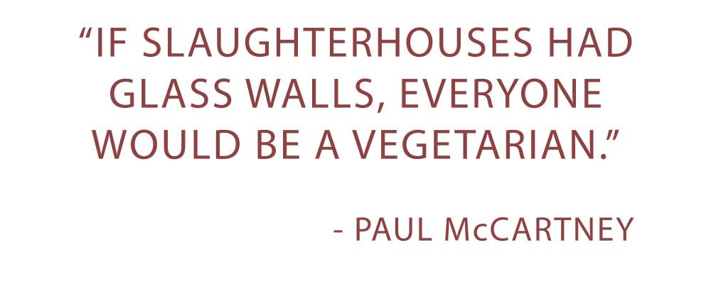 paulmccartney-quote.jpg