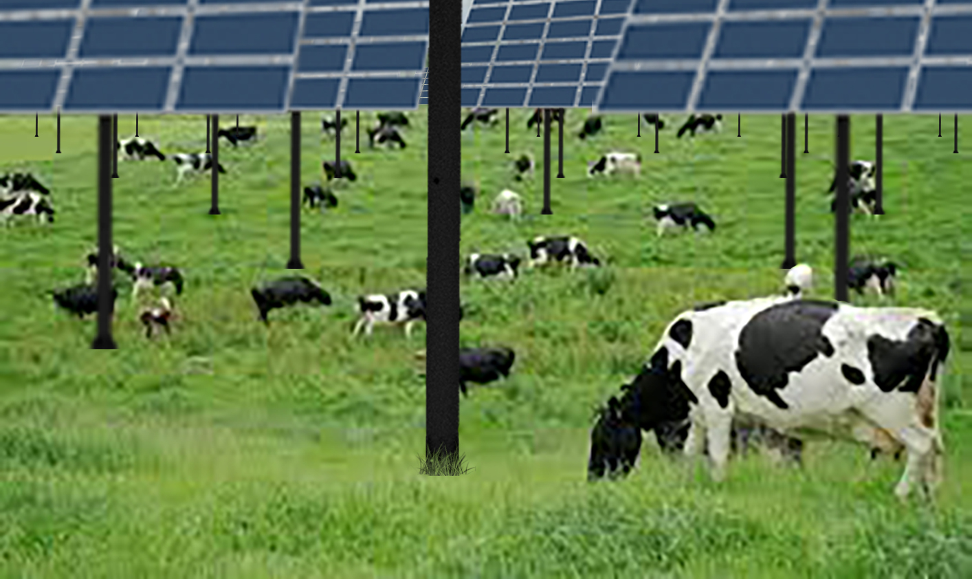 STrackers Solar Energy Agriculture