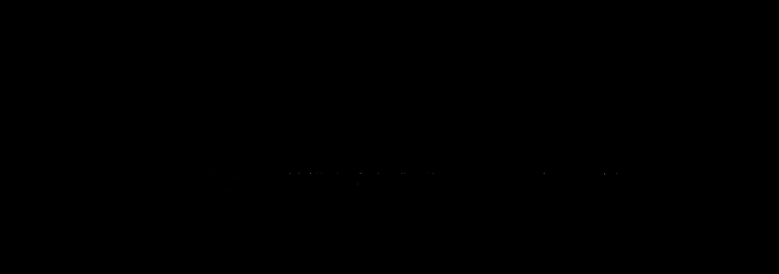 Signature Logo Graphic.png