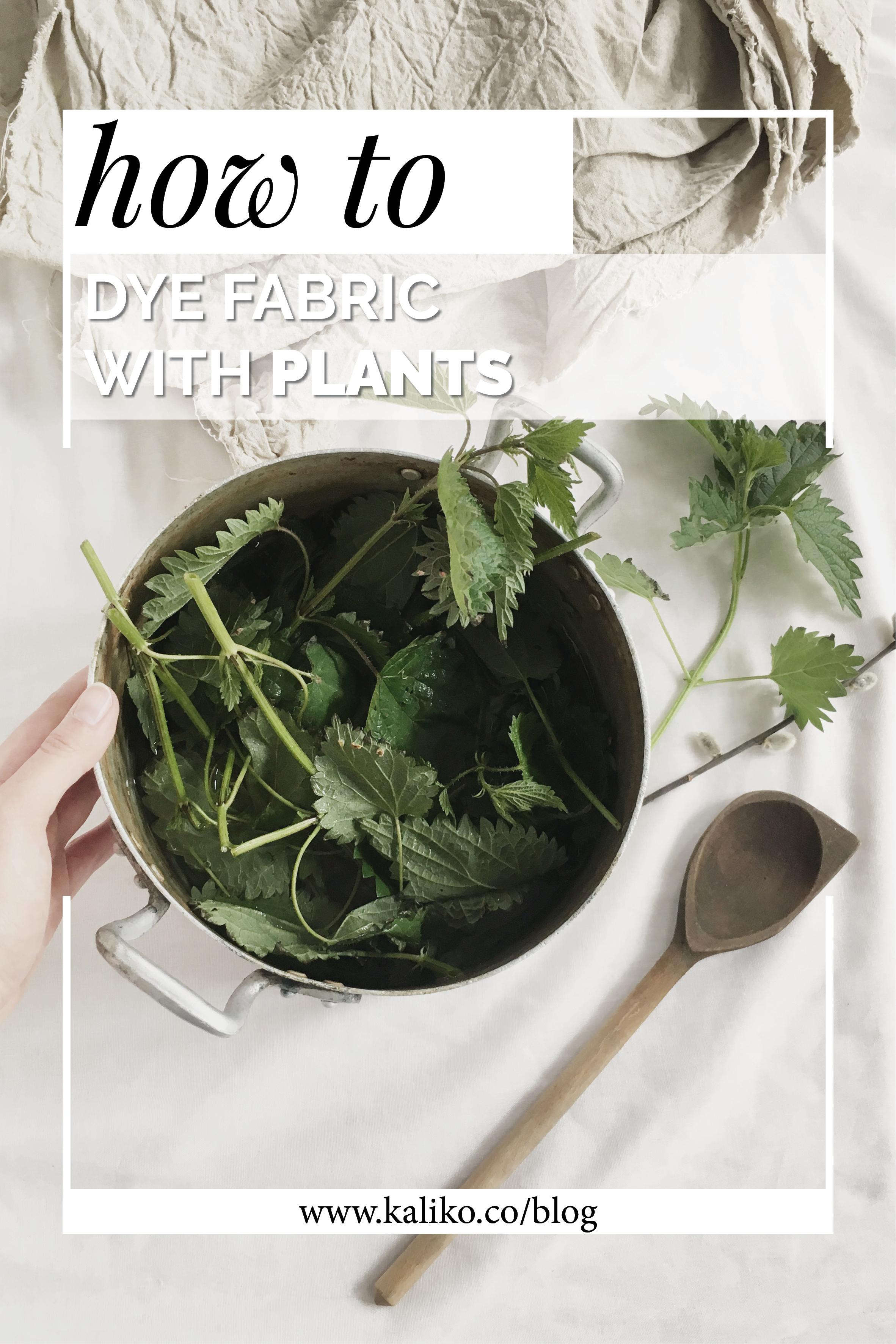 HOW TO DYE FABRIC WITH PLANTS .jpg