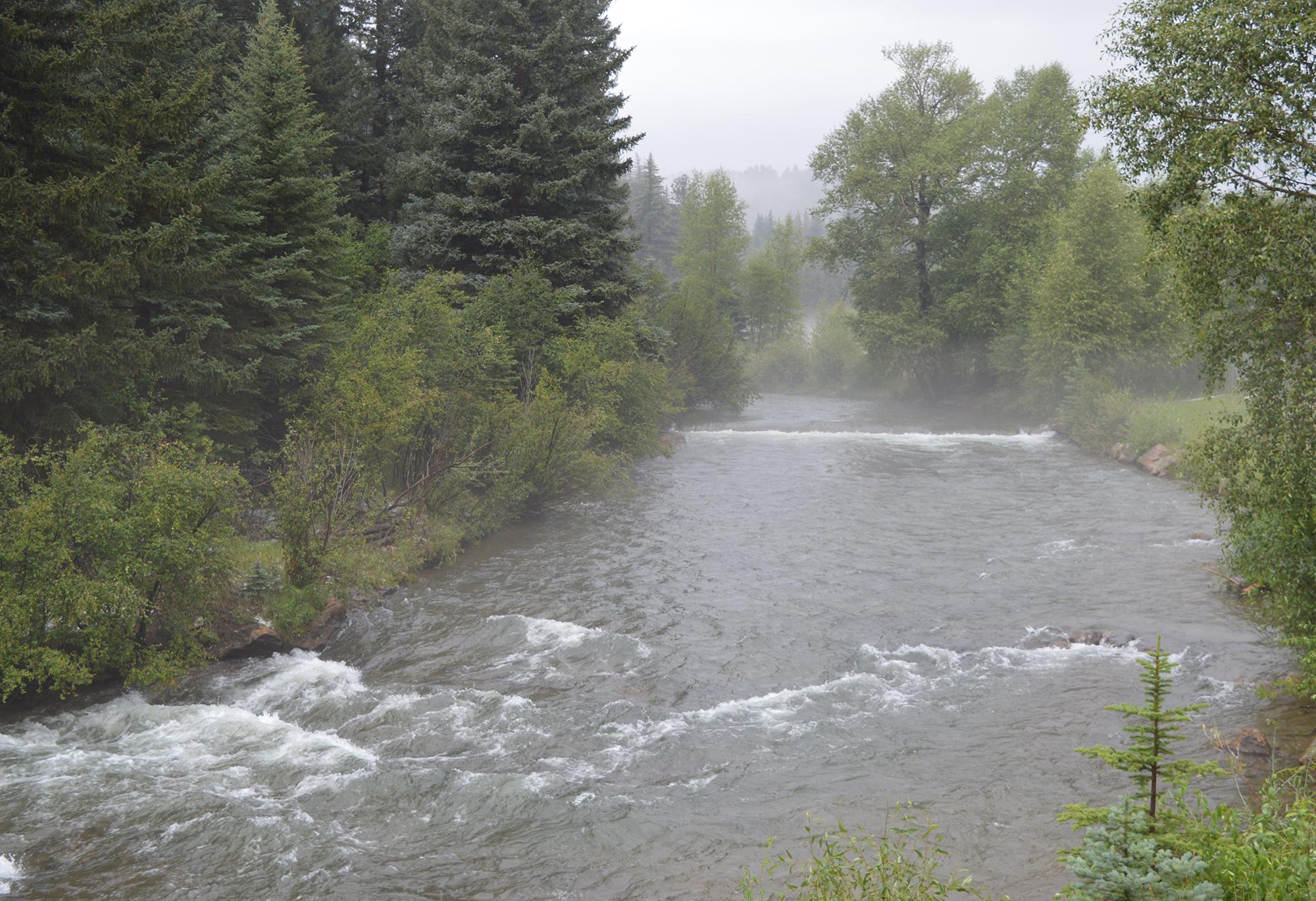 Fog_River_Reduced.jpg