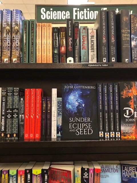 Sunder on Barnes and Noble shelf.jpg