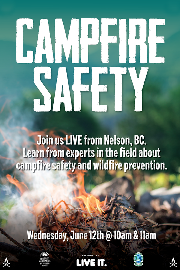 campfire-safety-small-poster.png