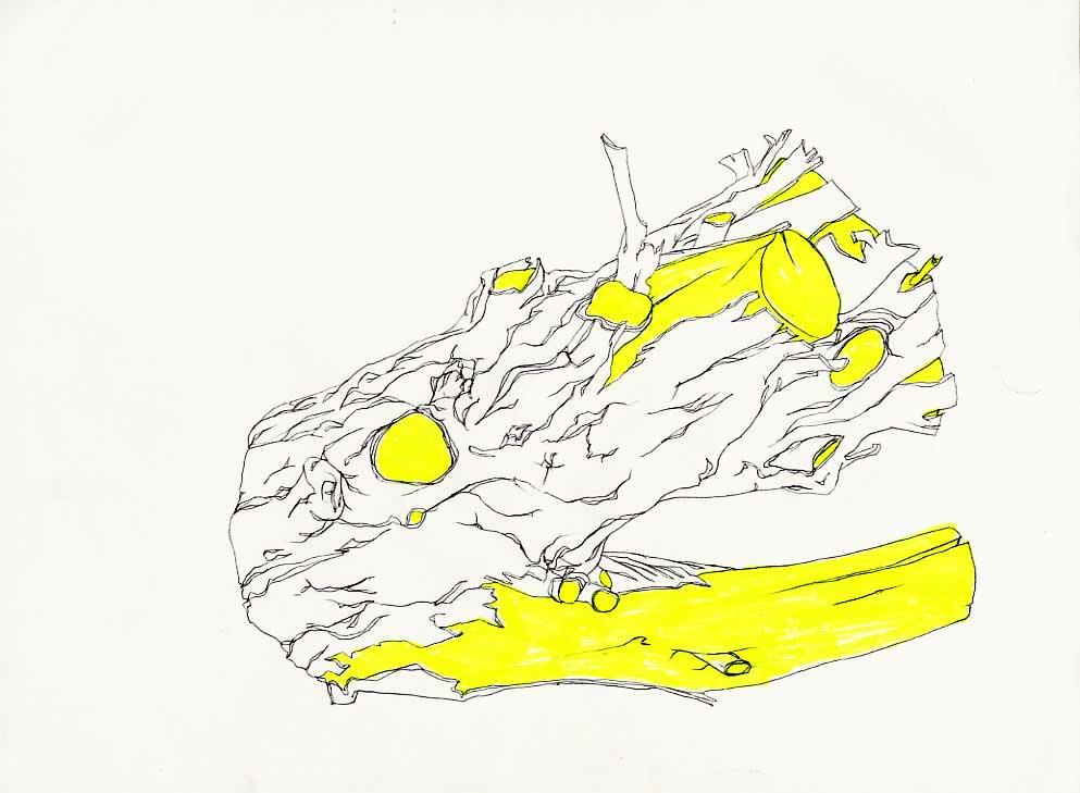 drawings035_jpg.jpg