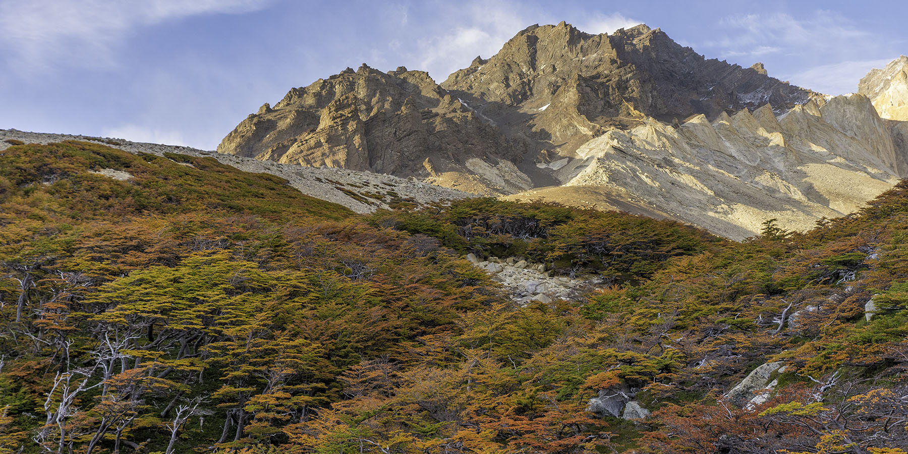 Autumn Leaves - Patagonia - Torres del Paine