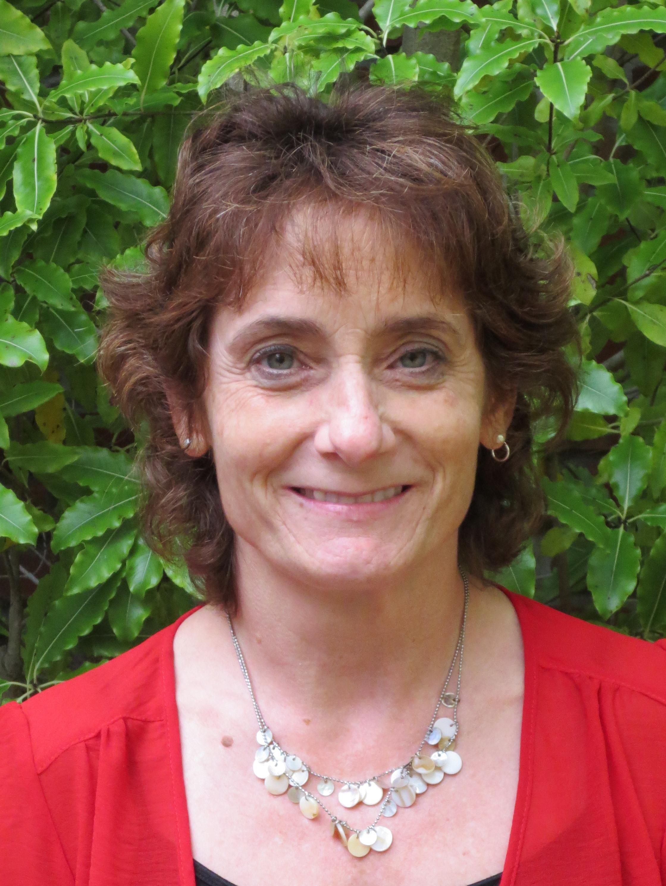 Christine Stoner Mertz  Lincoln Child Center    LinkedIn
