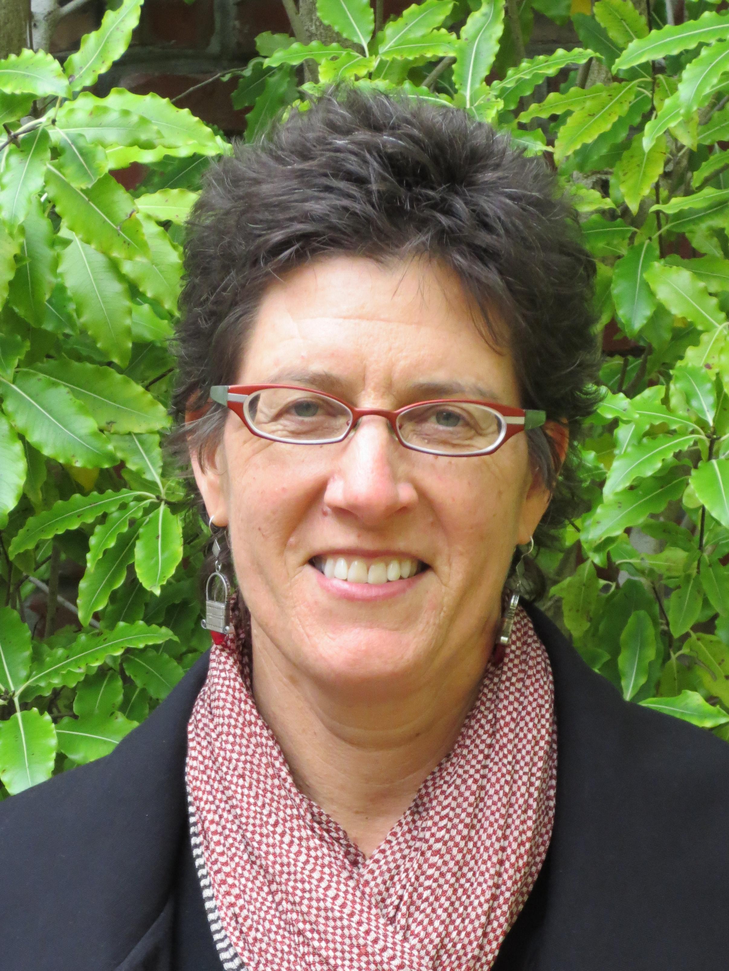 Rebecca Bauen  Family Violence Law Center    LinkedIn