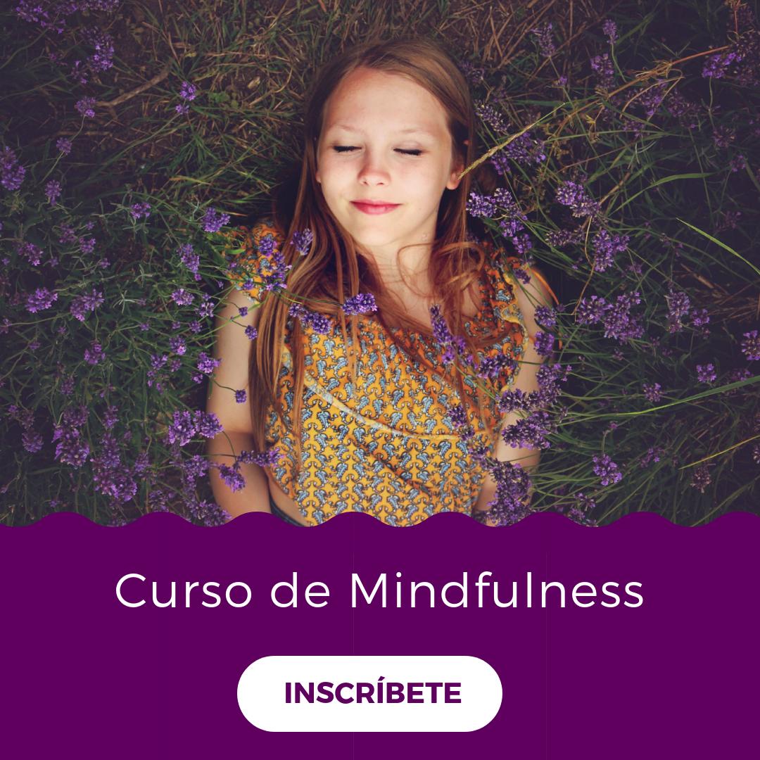 Taller Mindfulness.png