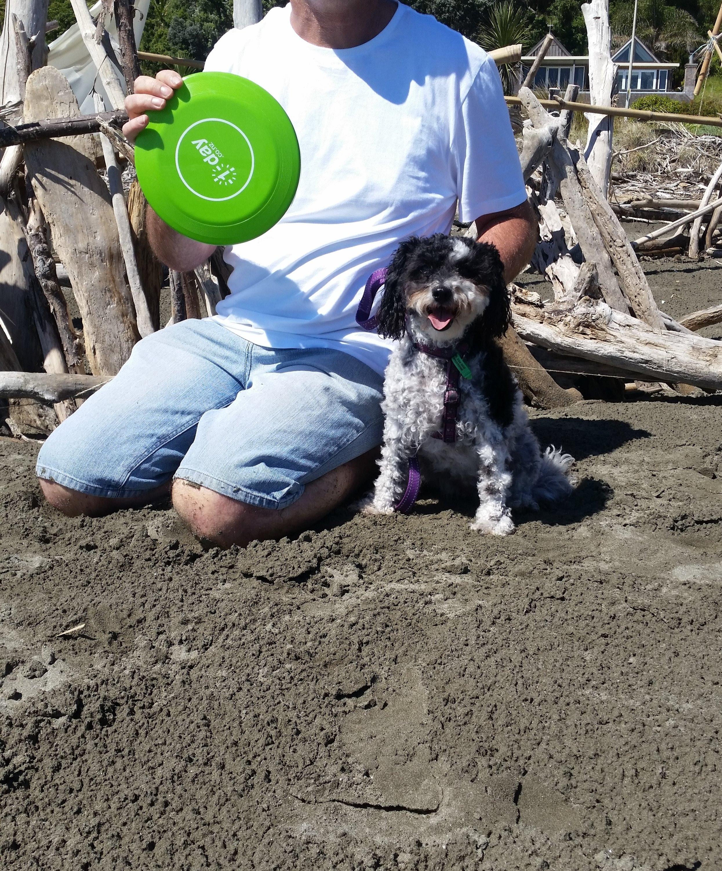 Doggos new frisbee