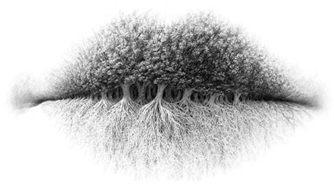 Trees1107.jpg