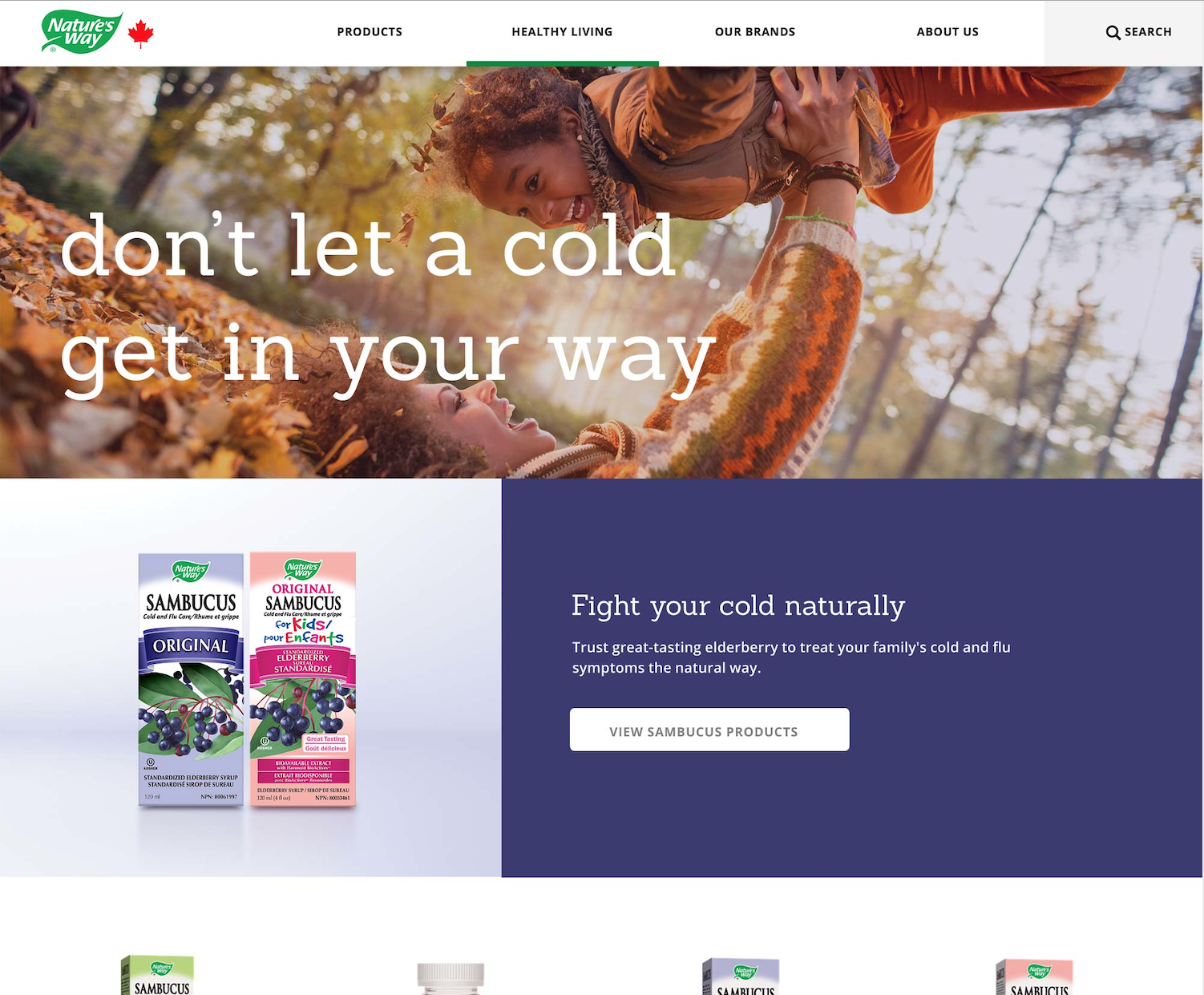 Nature's Way - Cold and flu landing page.