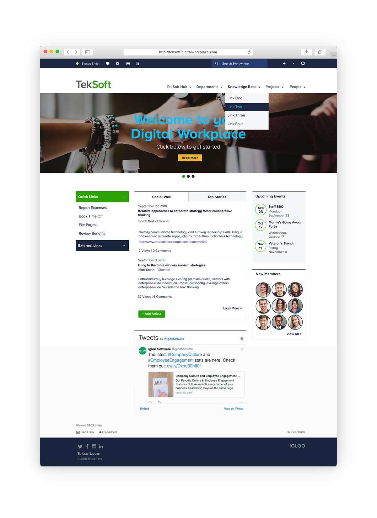 Software Company Digital Workplace Mockup
