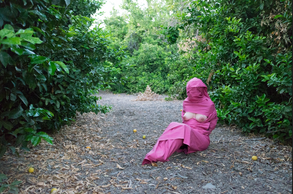 pink eliza orchard smaller size.png