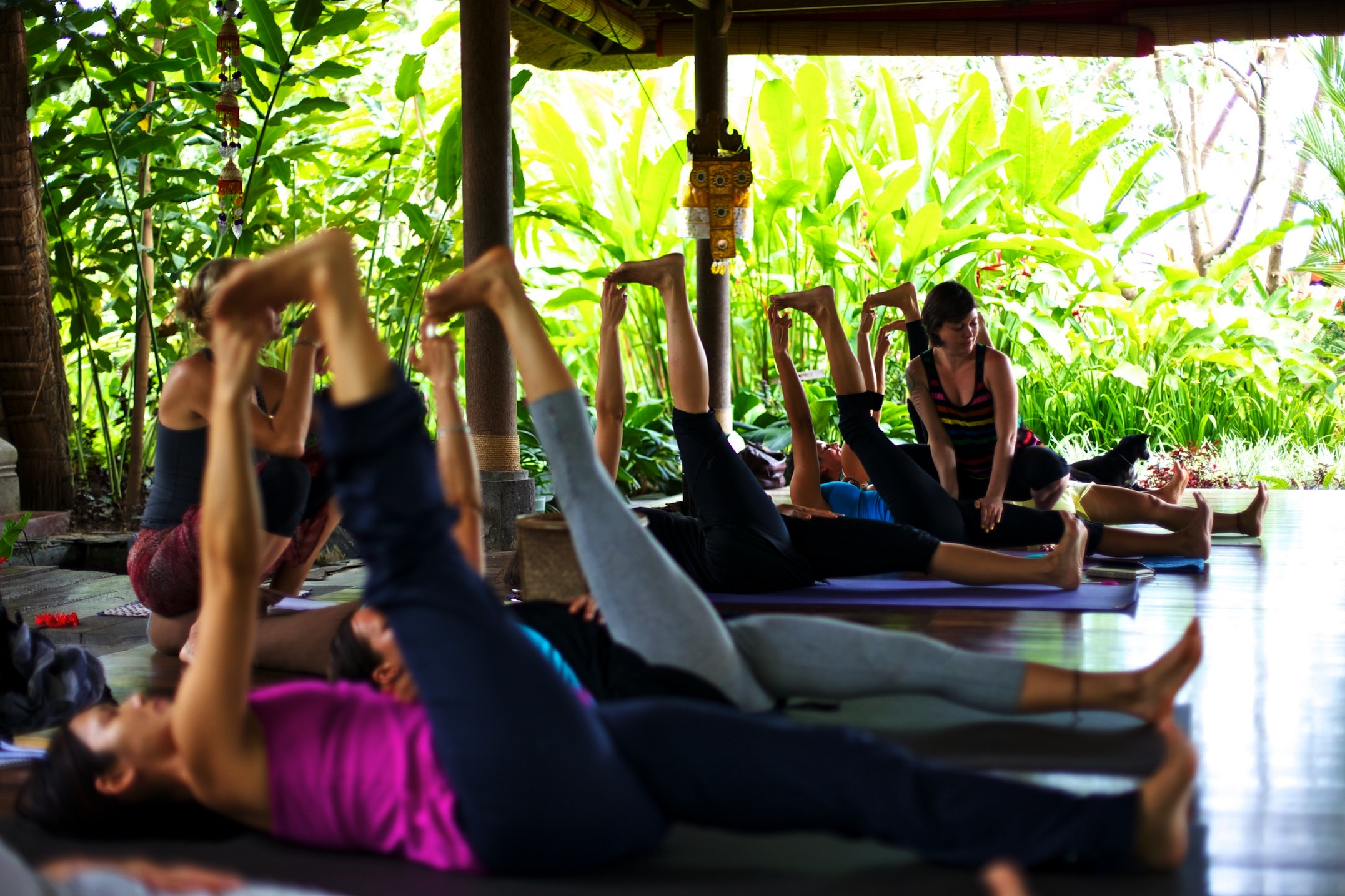 Retreats & Workshops -