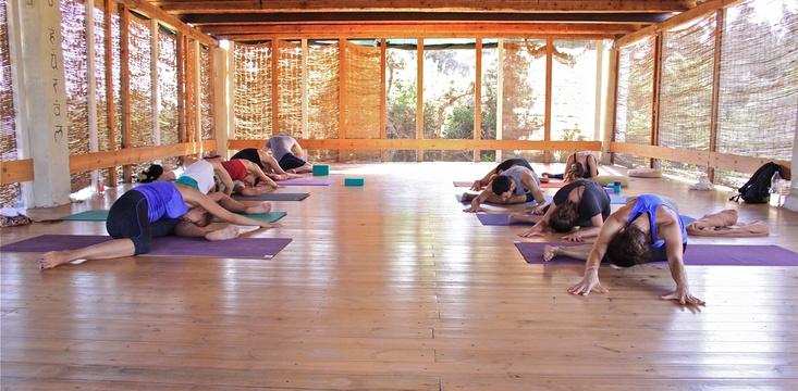 Embodied Flow Yoga Expression Module Paros Greece Scott Lyons Tara Judelle.jpg
