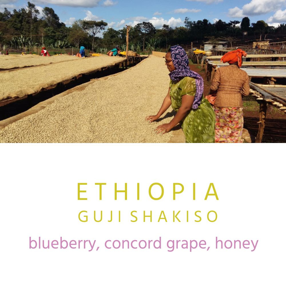 Our Guji Shakiso is a natural process coffee and comes from Kayon Mountain Coffee Farm in the Shakiso district. The farm is owned by families that were born and raised in the area and have 30 years of coffee experience. In the last several years Kayon Mountain Coffee Farm has focused on increasing the quality. The farm has been gaining recognition and winning awards for their outstanding coffees.