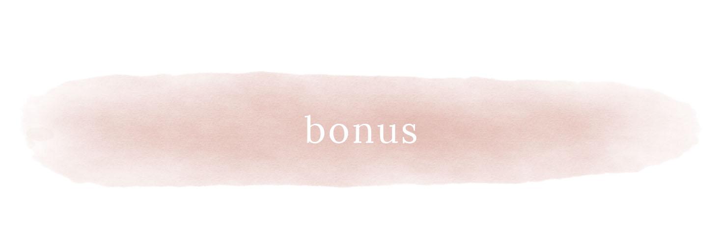 affiliate-program-bonus.jpg