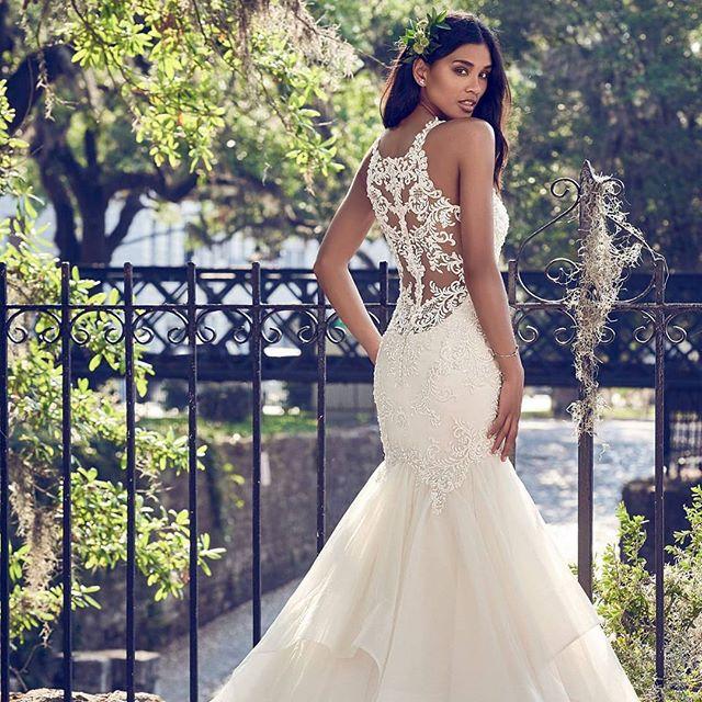shine like a star in always elegant bridal ✨| 10% off always elegant bridal gowns link in bio