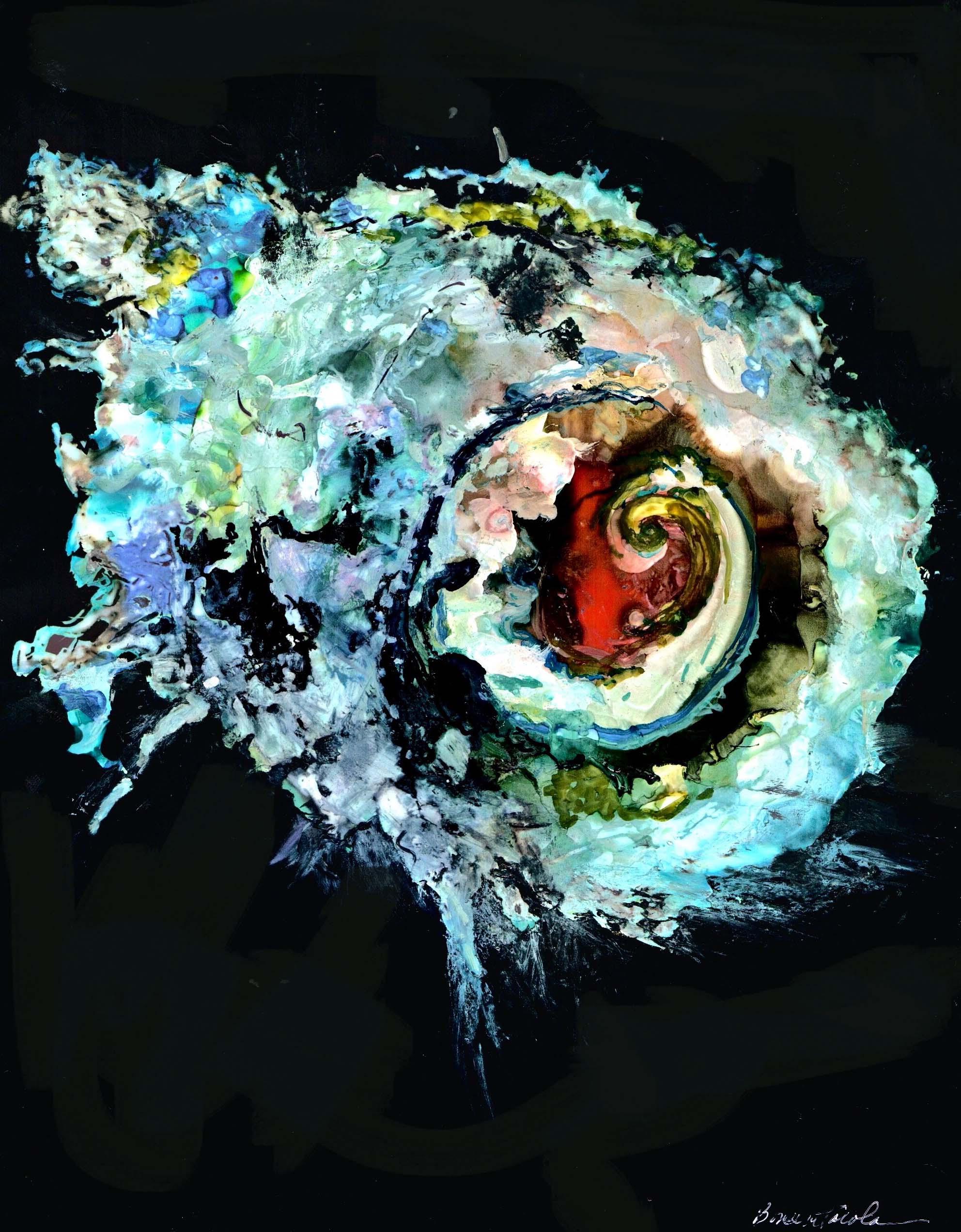 New Cosmic Sea Shell (1).jpg