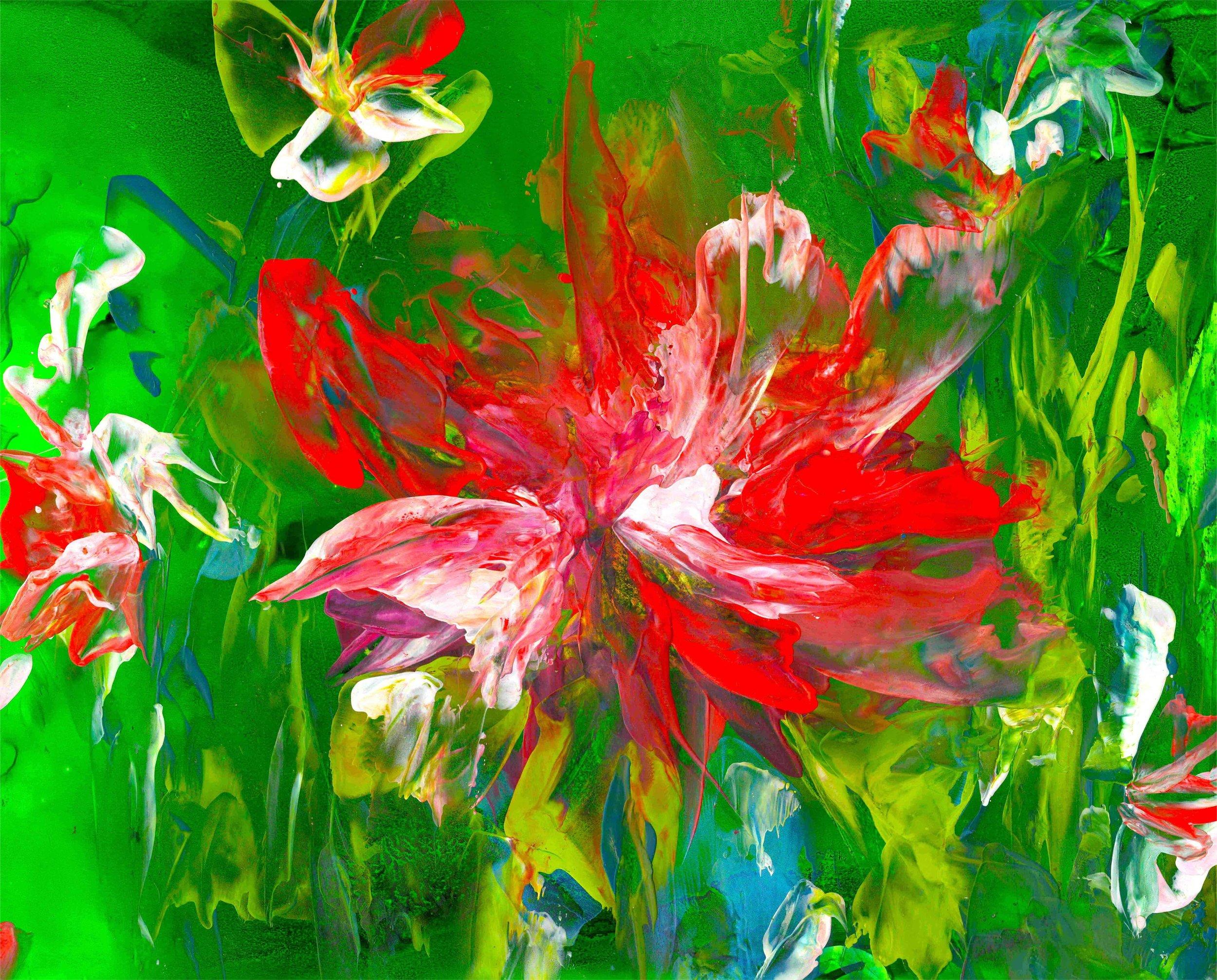 Poinsettia-Fantasy-Party.jpg