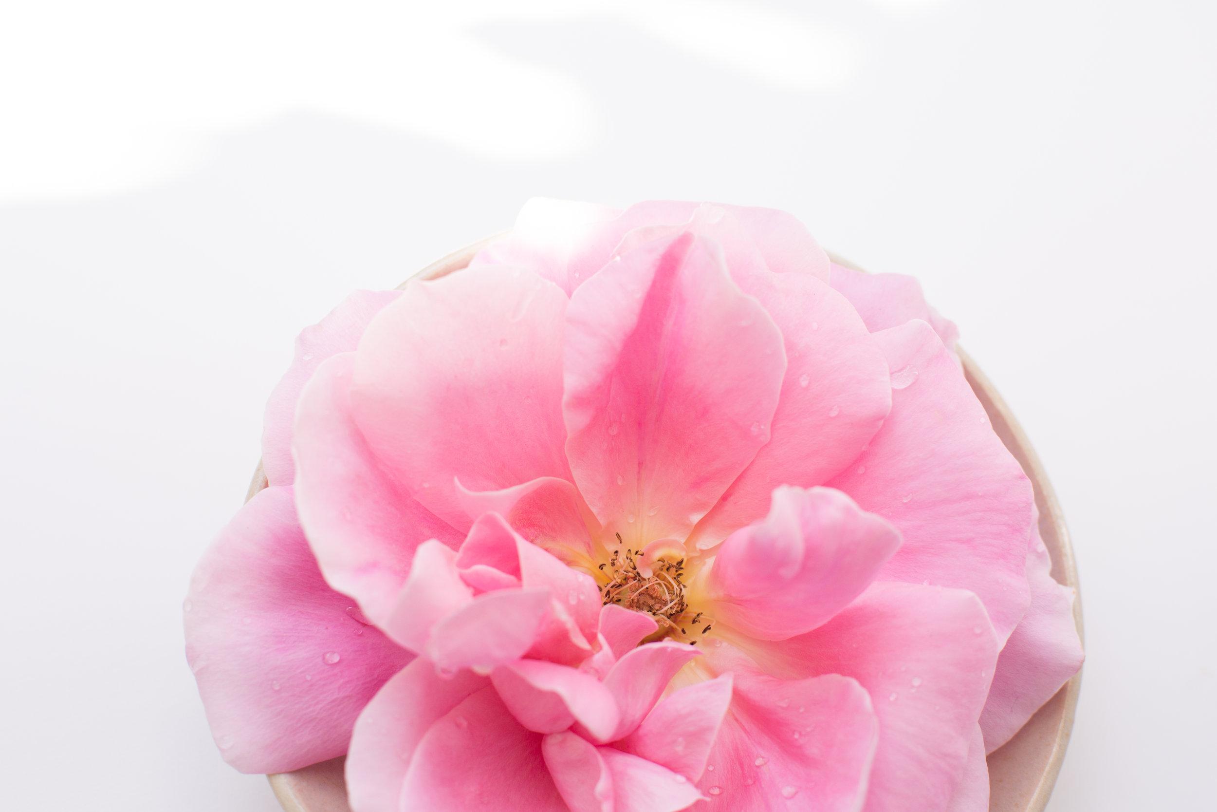 flower-essense