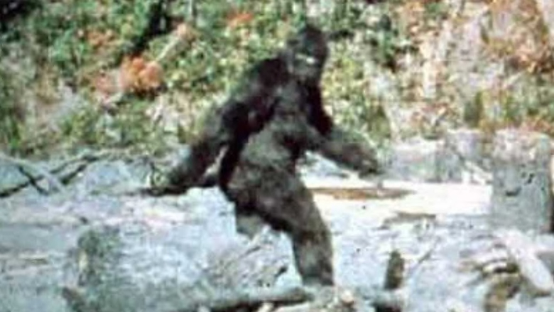 "The iconic frame 352 of the Patterson-Gimlin film, with the subject now known today as ""Patty."""
