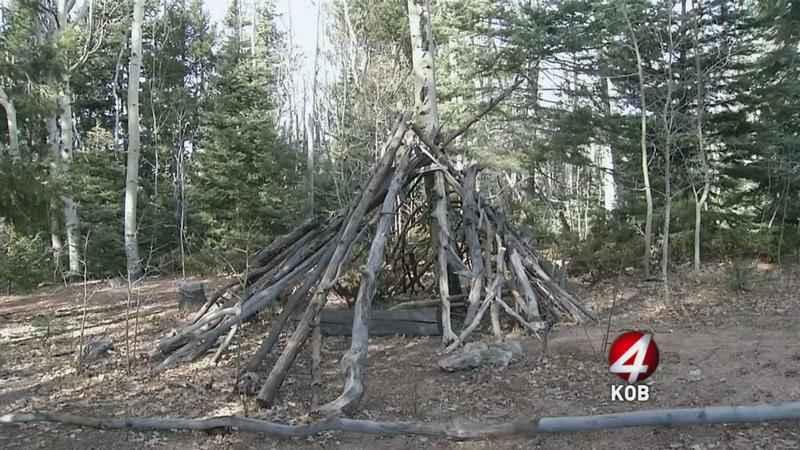 2 stick structure.jpg