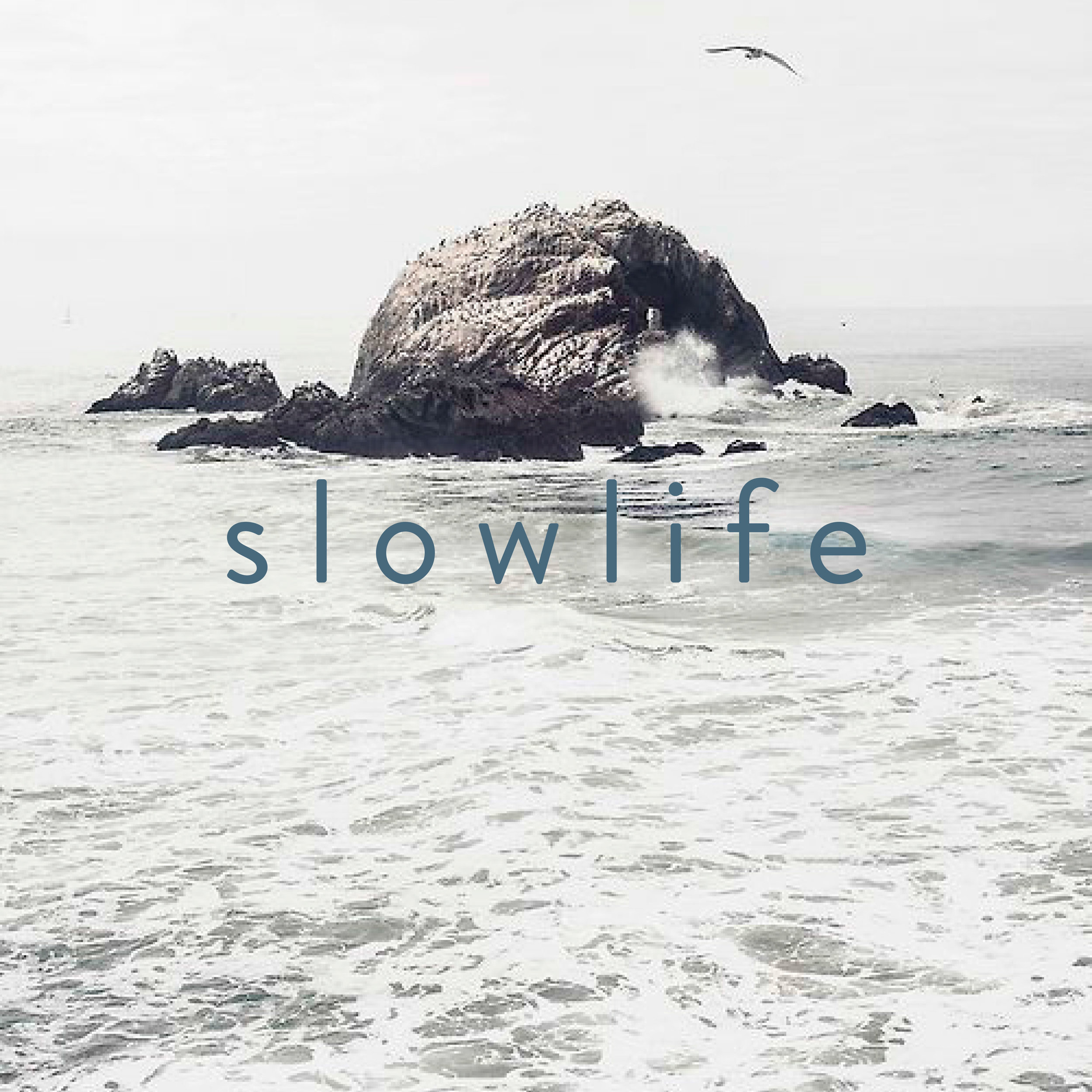 9-slowlife.jpg