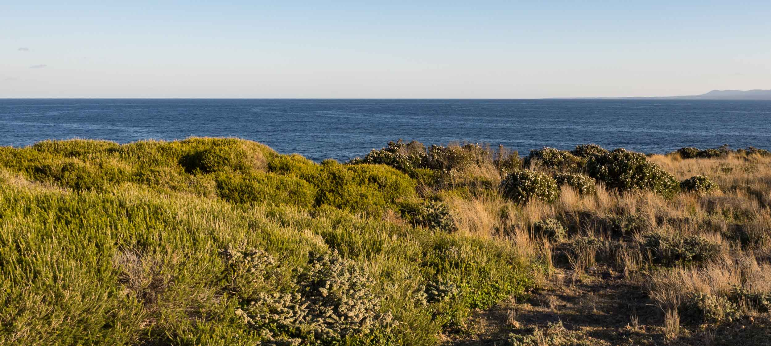 Greencape, looking south, with Point Hicks (and the NSW-Victoria border) in the distance