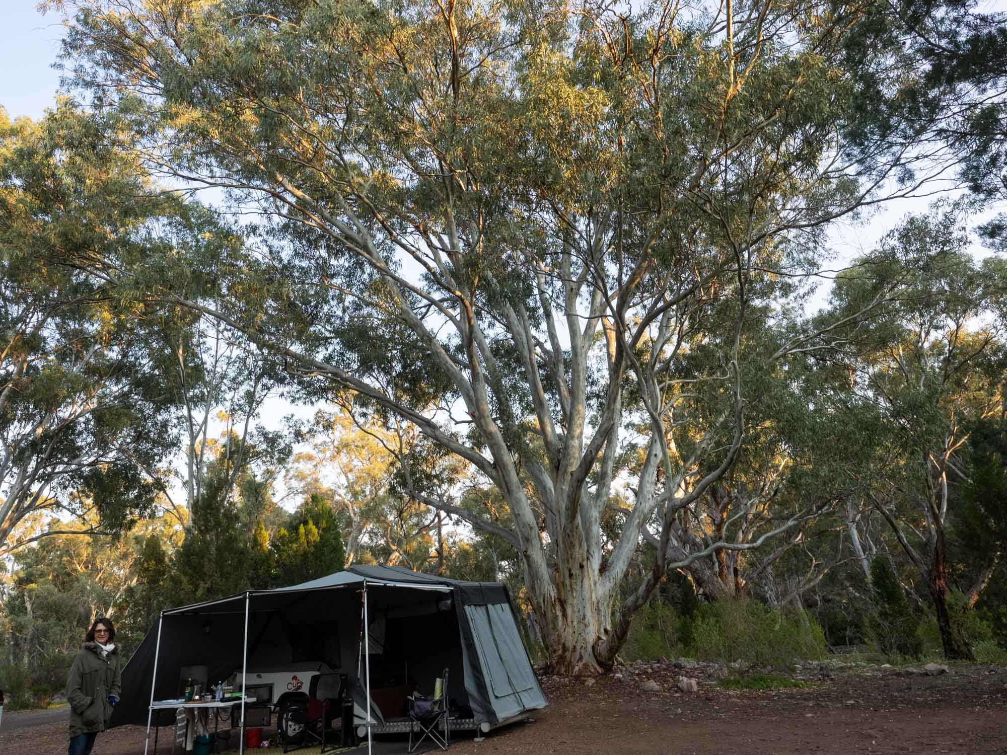 Wonderful campsite … hot showers, no power, no internet … and (nearly) no neighbours.
