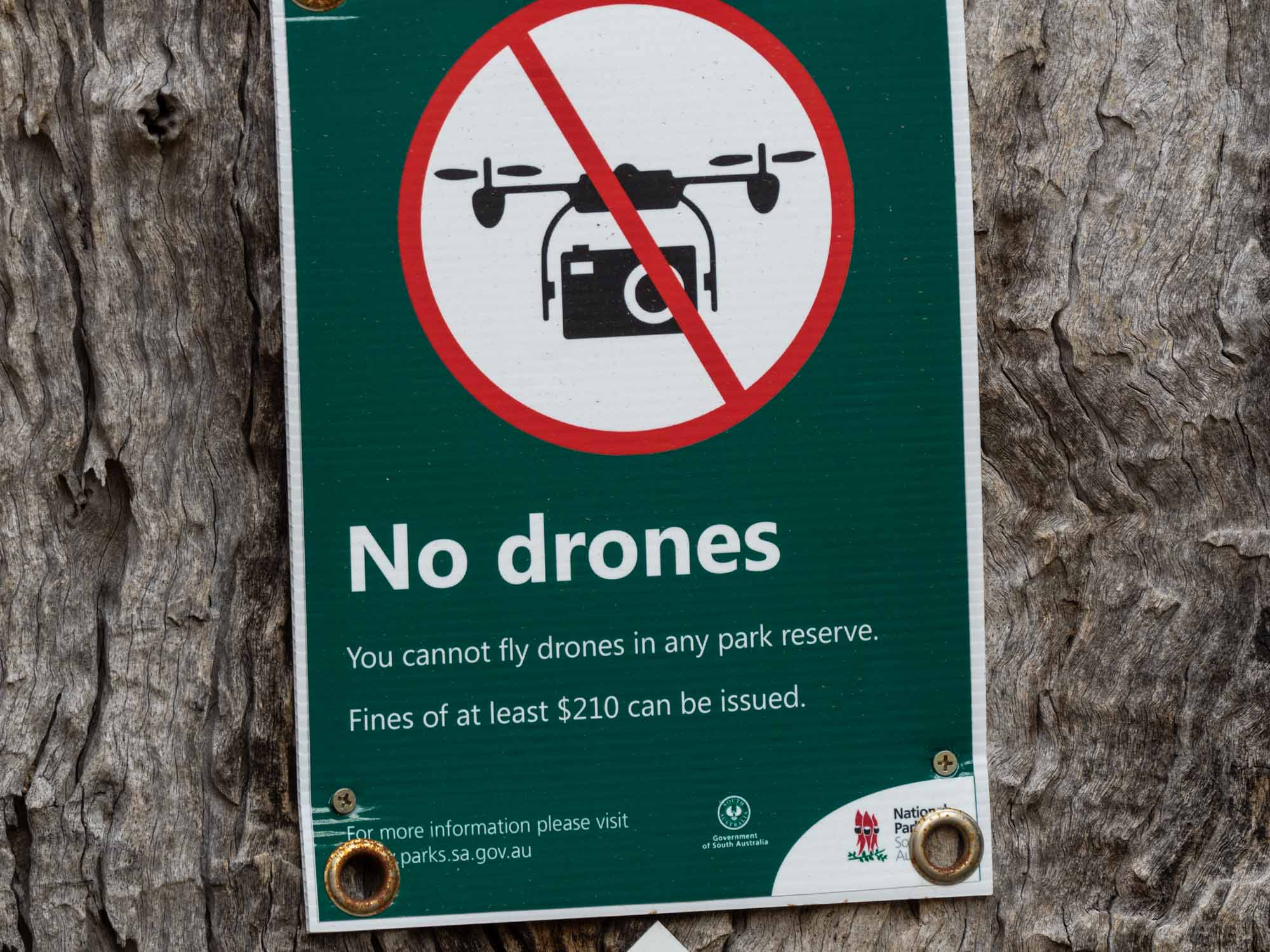 … and no drones! Perfect!!