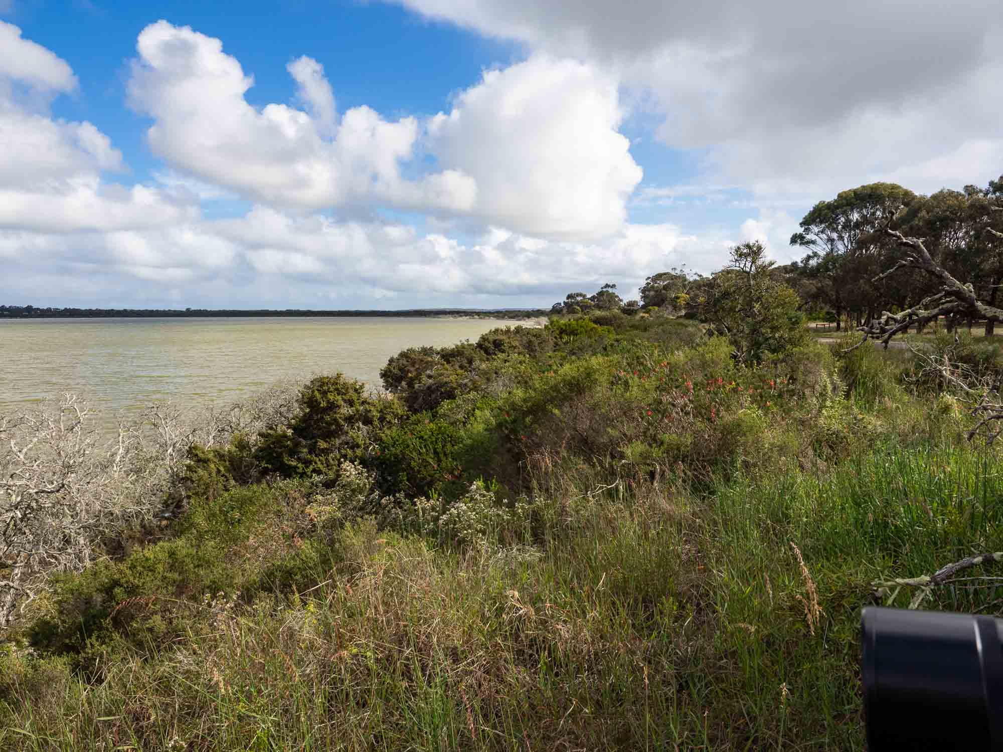 Yesterday, during a short break in the weather, we took a walk around the lakes of Esperance