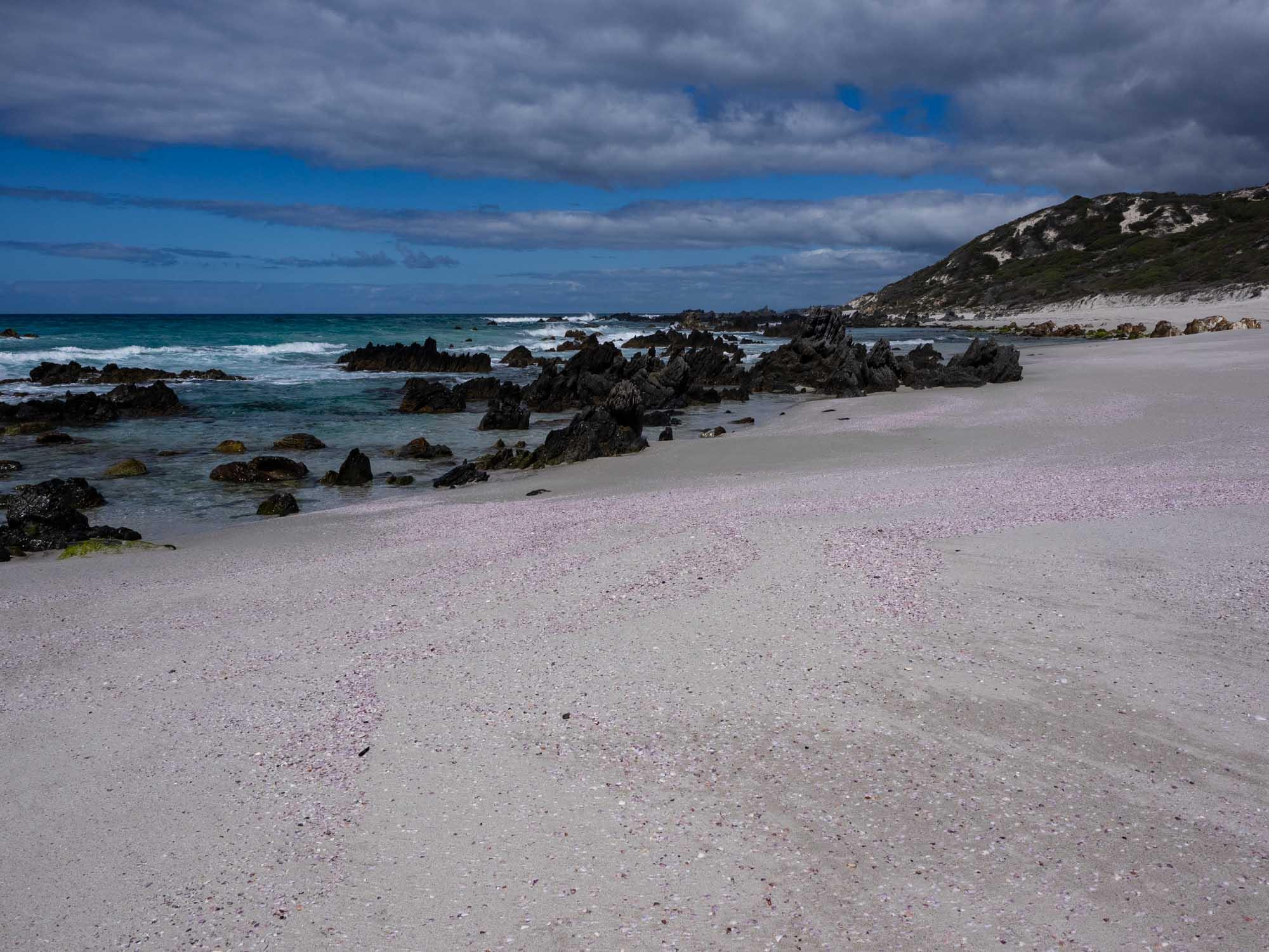 A pink beach!