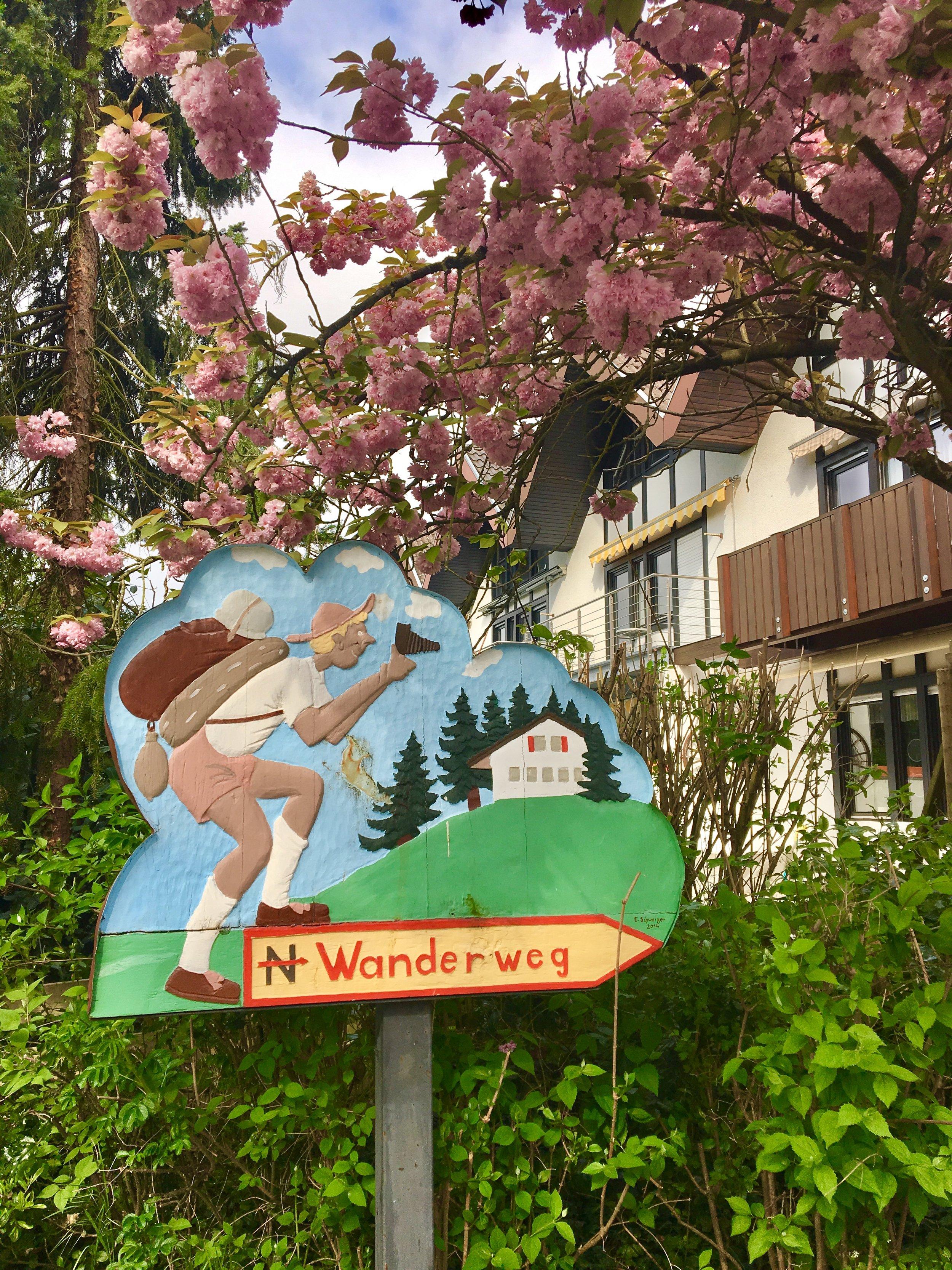The Numerous Wanderwegs to be Explored