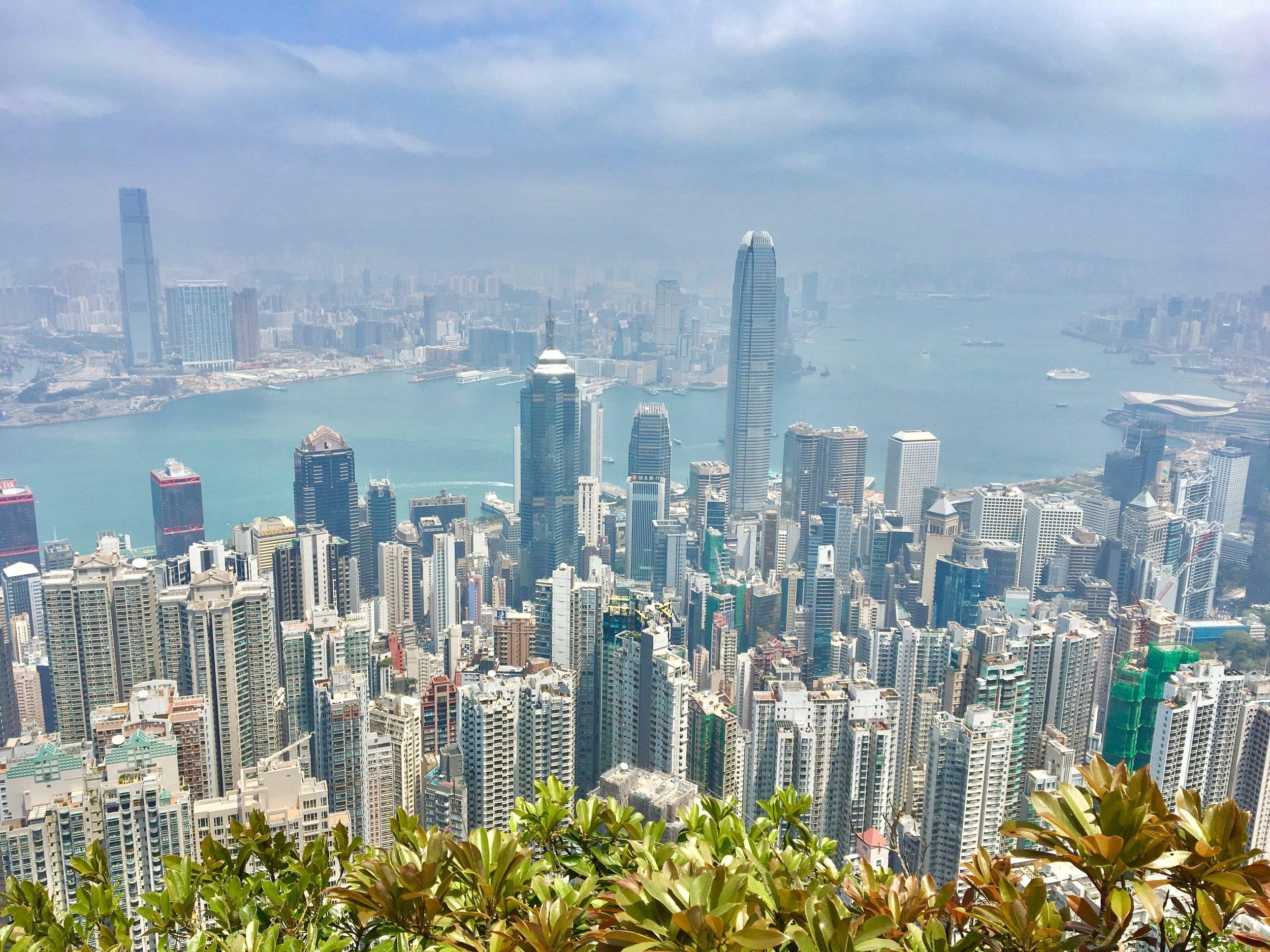 City Vista From The Peak
