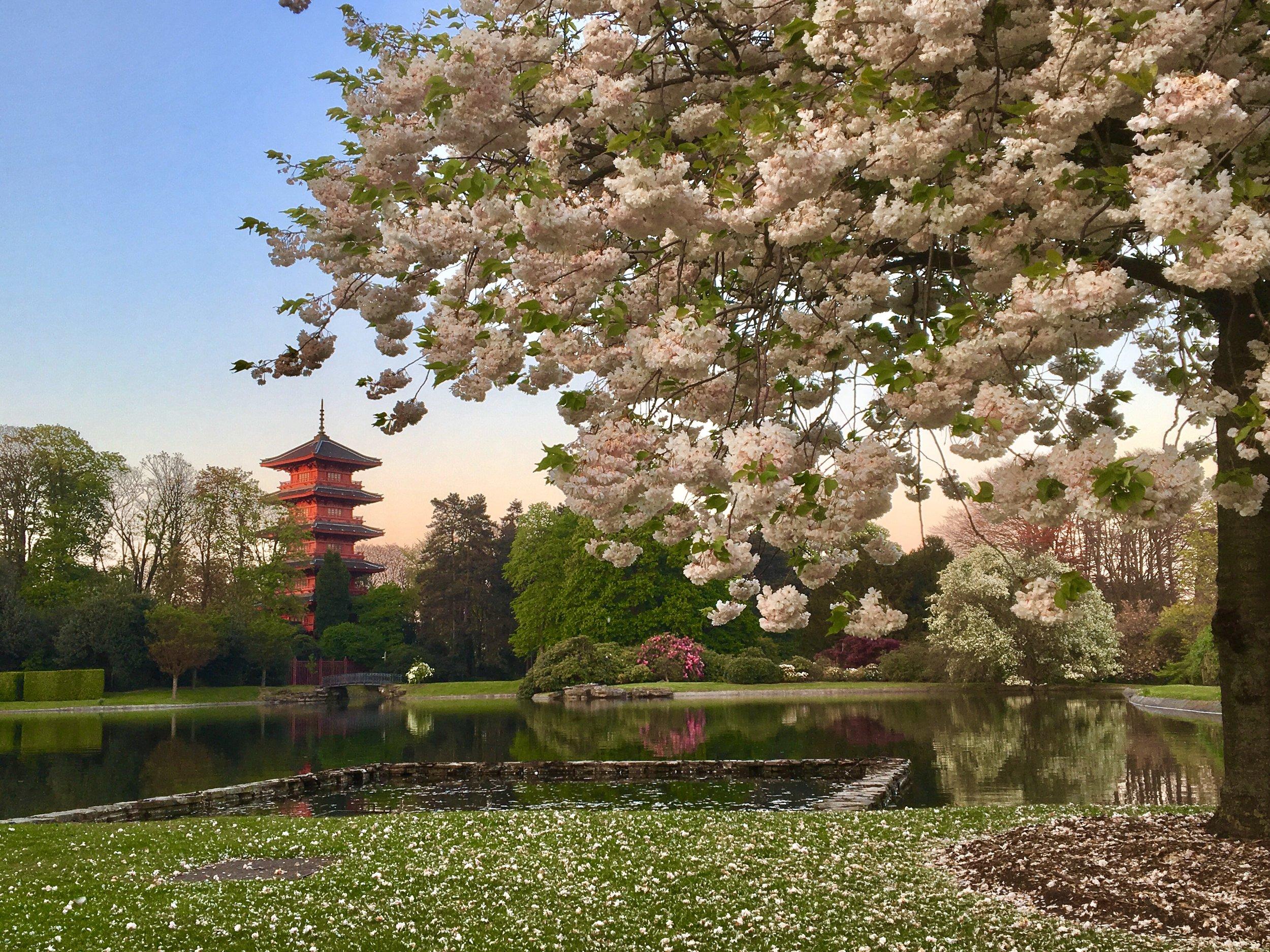 Oriental Gardens in Laeken Palace