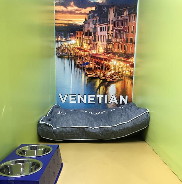 Venetian-Boarding-Room-Andys-Pet-Grooming-Daycare.jpg